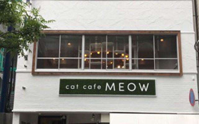 猫カフェ MEOW